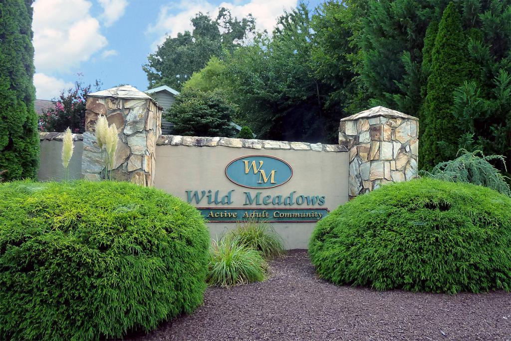 Wild Meadows