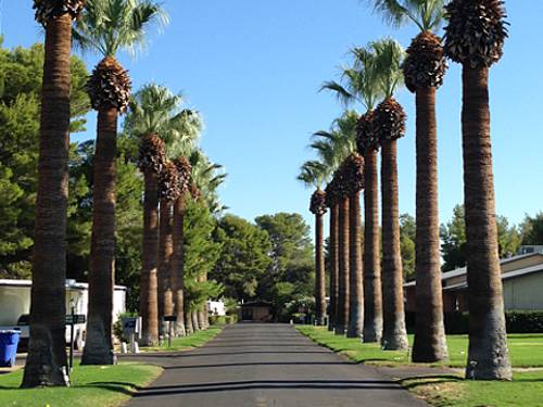 Crescent Manor (AZ)