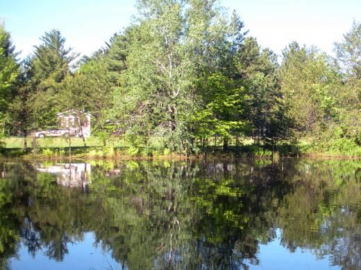 Evergreen Villa