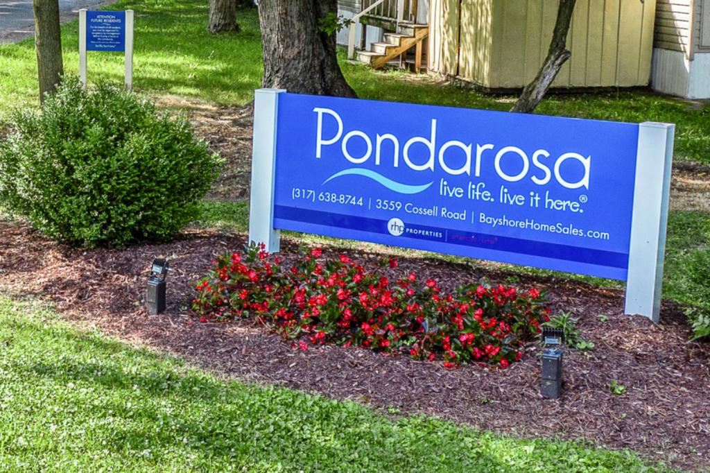 Pondarosa (IN)