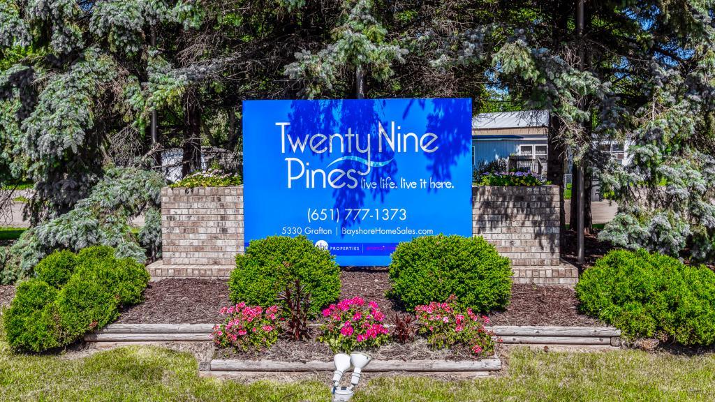 Twenty-Nine Pines