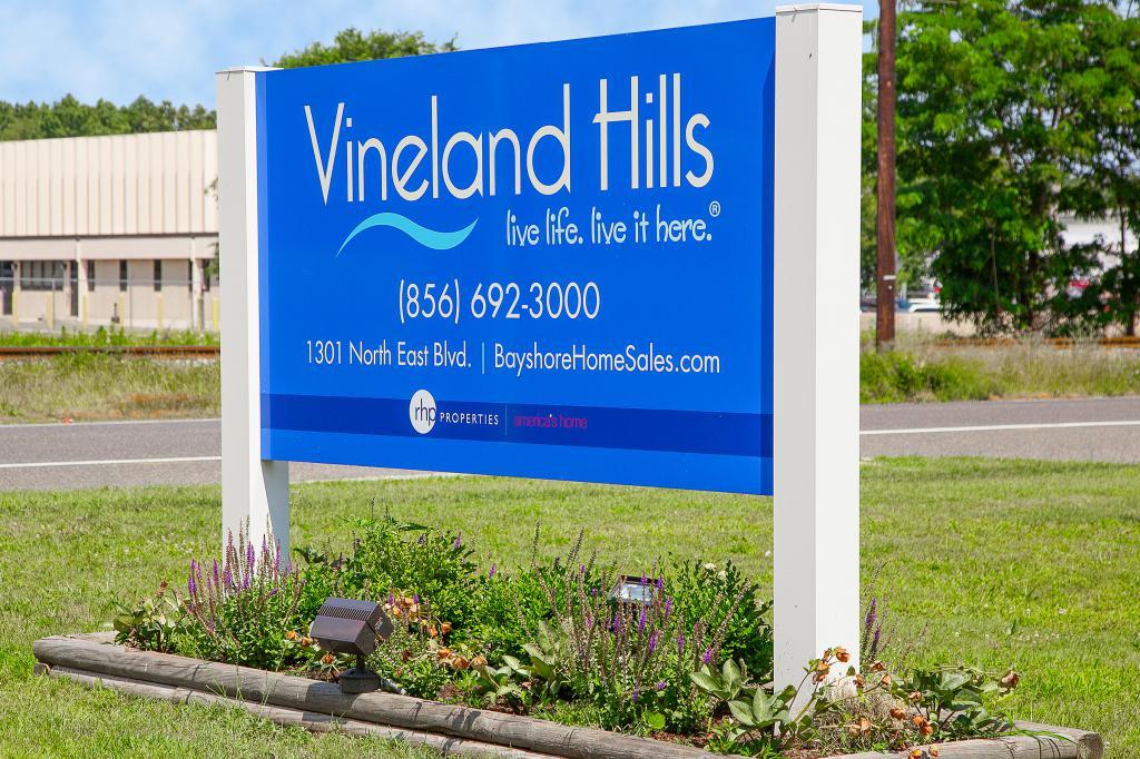 Vineland Hills