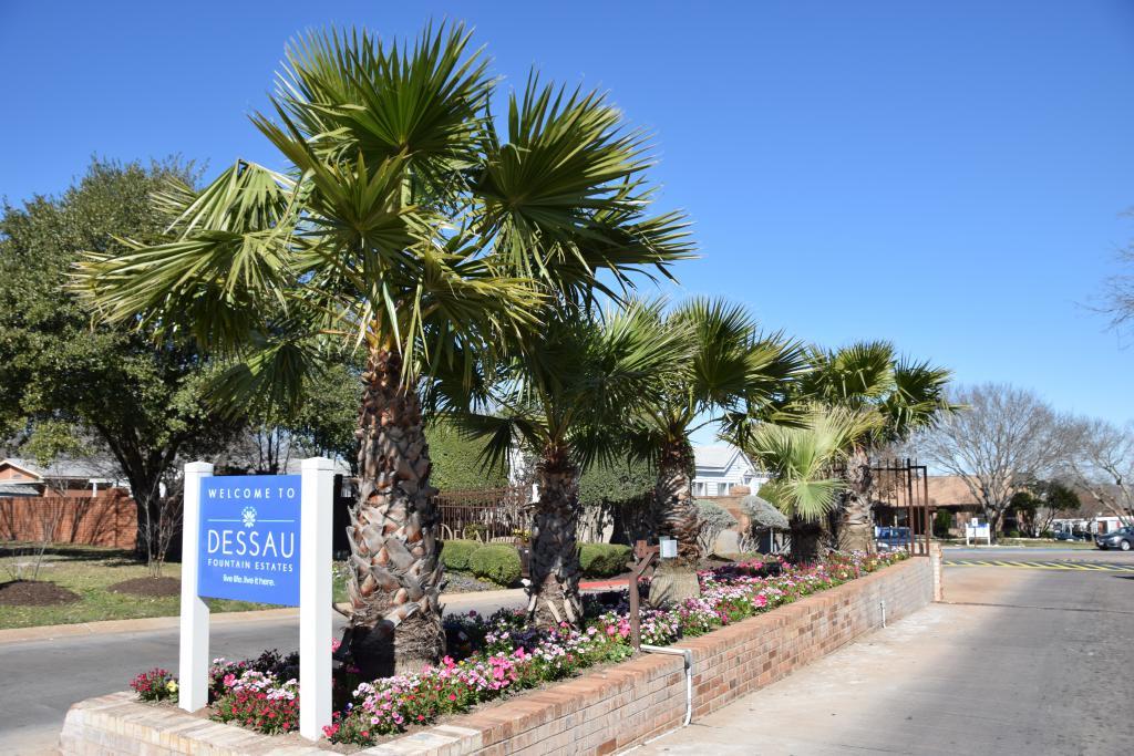 Dessau Fountain Estates (TX)